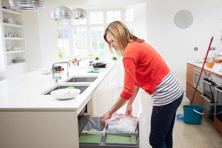 Comment se débarrasser des moucherons dans une cuisine ?