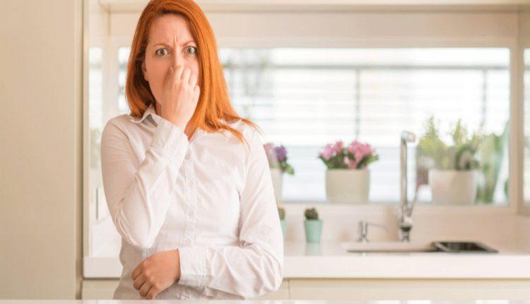 Votre évier sent-il parfois mauvais ?